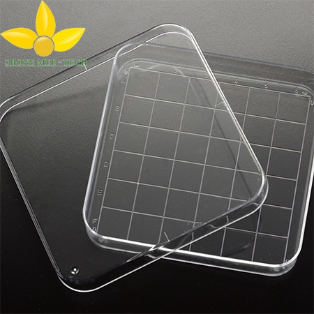 Sterilized Square Petri Dish